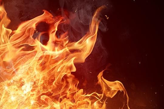Вогнезахисні засоби DEFENS